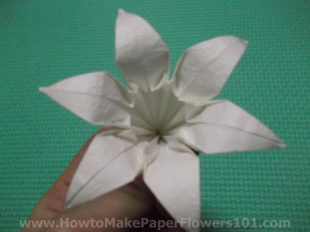 How To Make An Origami Lily Step By Step Origami Pinterest
