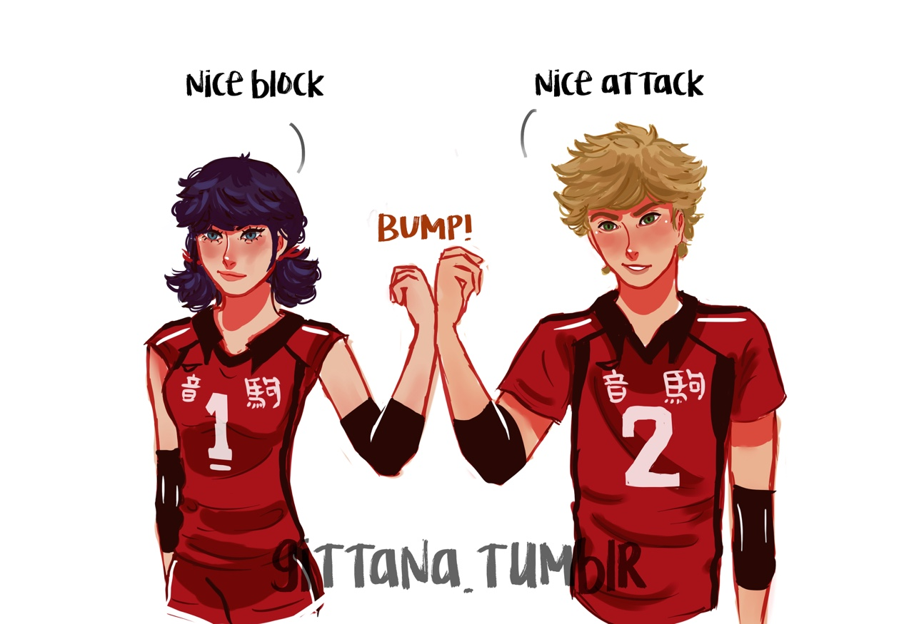 I Started To See Haikyuu And I Had To Do This Volleyball Au Where Adrien And Marinette Are From Th Ladybug Miraculous Ladybug Anime Miraculous Ladybug Comic