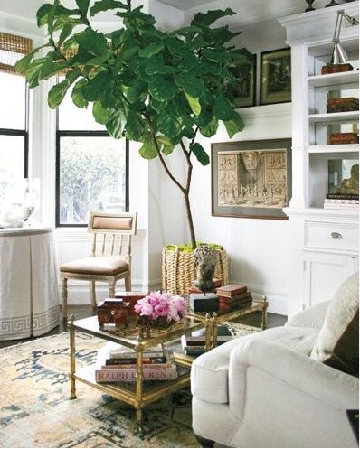 white bookshelves!!