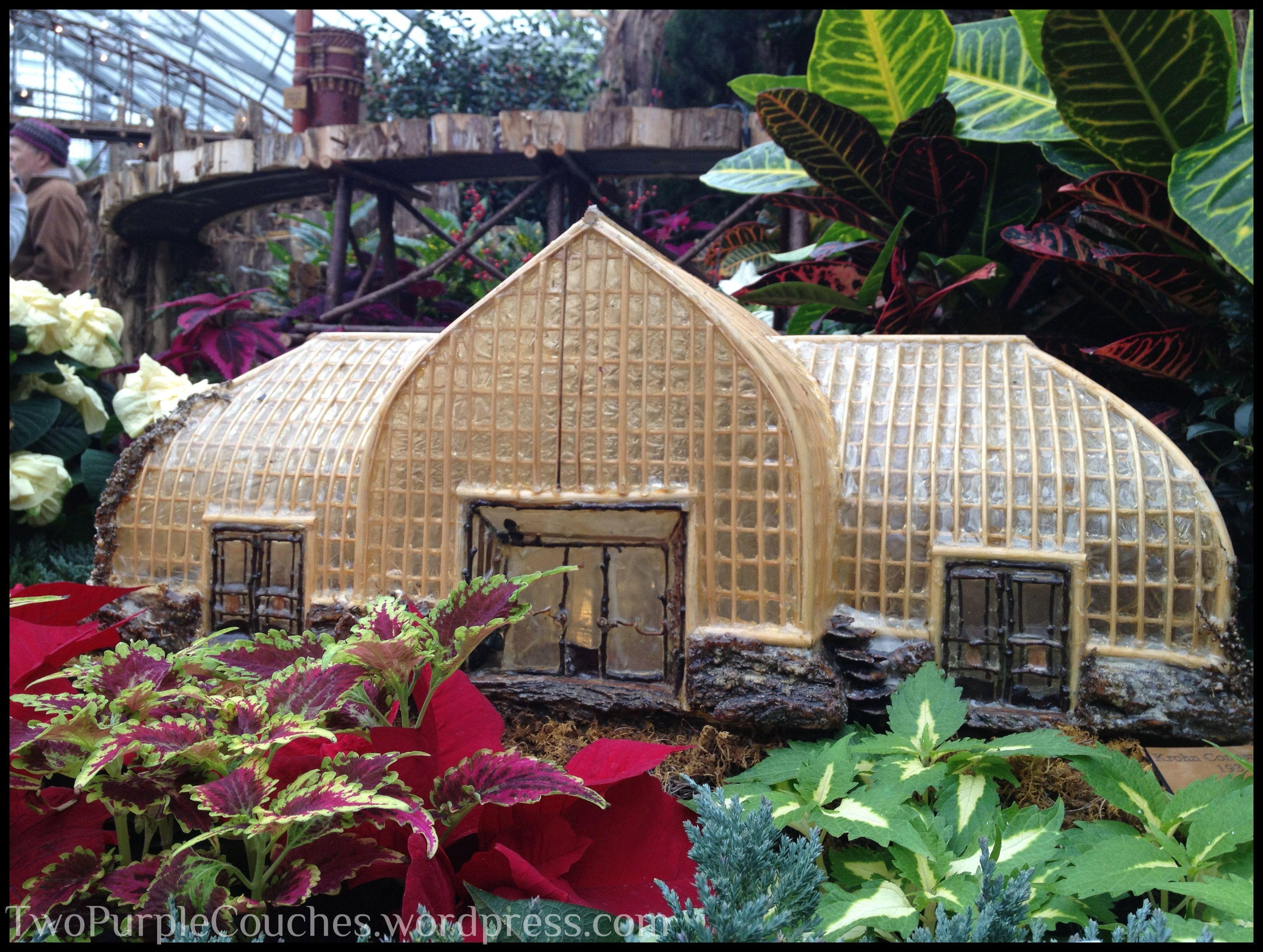 Holiday Traditions: Krohn Conservatory Pointsettia & Train Display ...