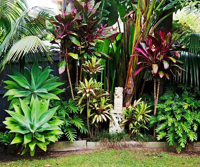 Balinese-inspired garden in Sydney's Northern Beaches A Balinese holiday inspired the design of this lush and tropical garden in Sydney's Northern Beaches. The owners selection of tropical plants fit in perfectly to their coastal location, creating a holiday-like haven all year round.A Balinese holiday inspired the design of this lus...