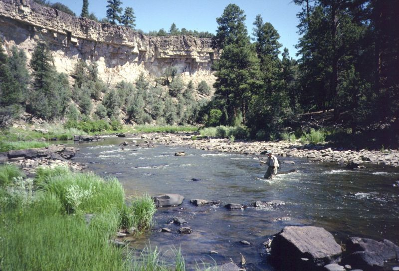 Fly Fishing The Chama River Northern Nm Thereellife Com Fishing Places New Mexico Mountains Fly Fishing
