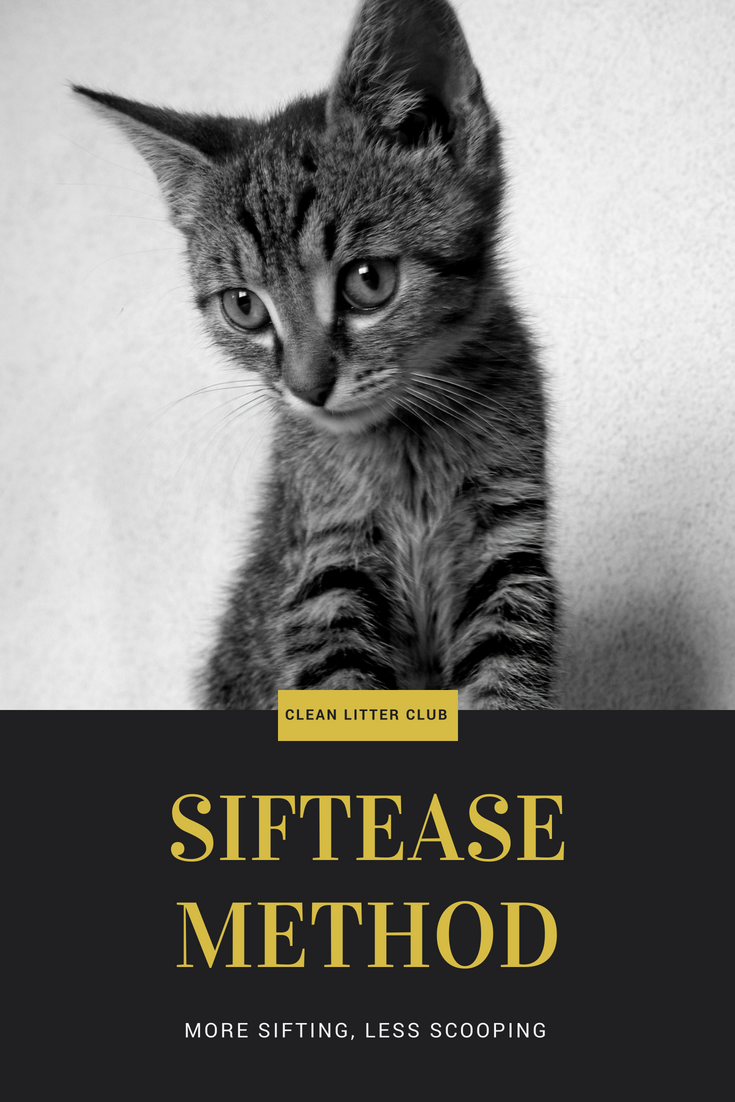 Siftease Method Clean Litter Club Cat Day Litter Funny Cats