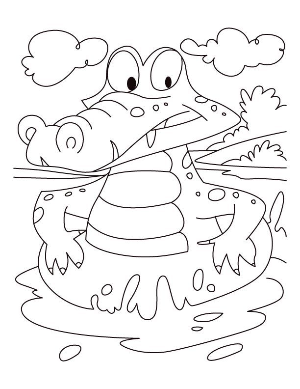 Alligator On A Swim Drill Coloring Pages Krokodillen Pinterest