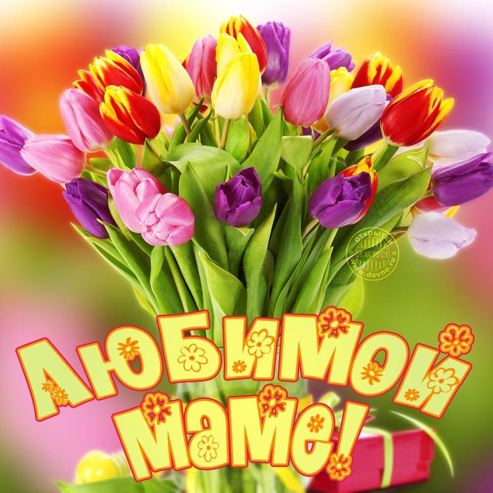 Цветочки для мамы картинки, днем