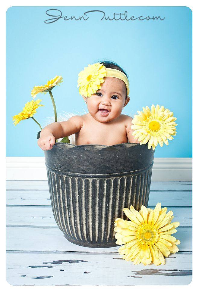 272 : babies in flower pots - startupinsights.org