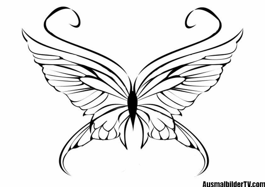 Schmetterling Malvorlage Schmetterling Illustration Malvorlagen Tiere Malvorlagen