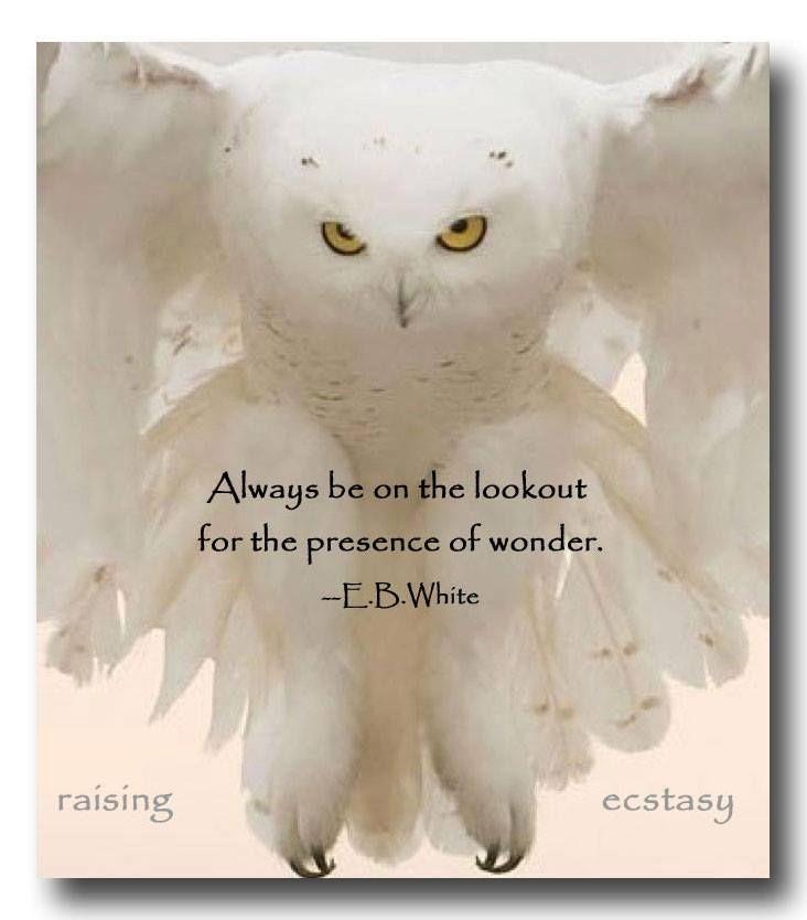 It surrounds you.. fills you... always... xo
