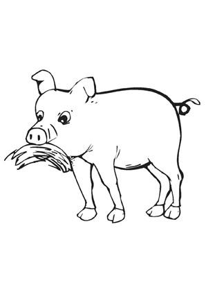 Ausmalbild Fressendes Schwein Ausmalbilder Tiere Ausmalen Ausmalbild