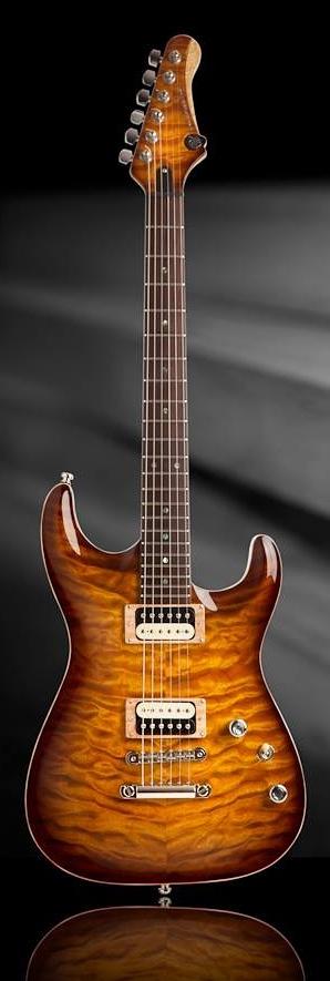 UFNAL Custom Guitars SLM www.lessonator.com
