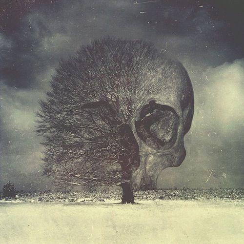 #skull #tree #death #life