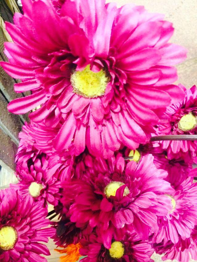 Fake pink flowers documentary photography pinterest fake pink flowers mightylinksfo