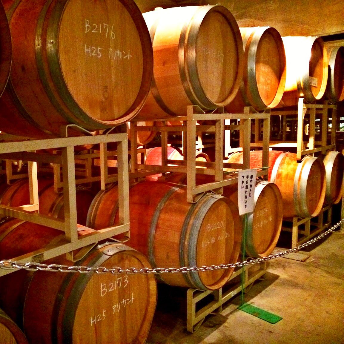 #Winery #japan #yamanashi