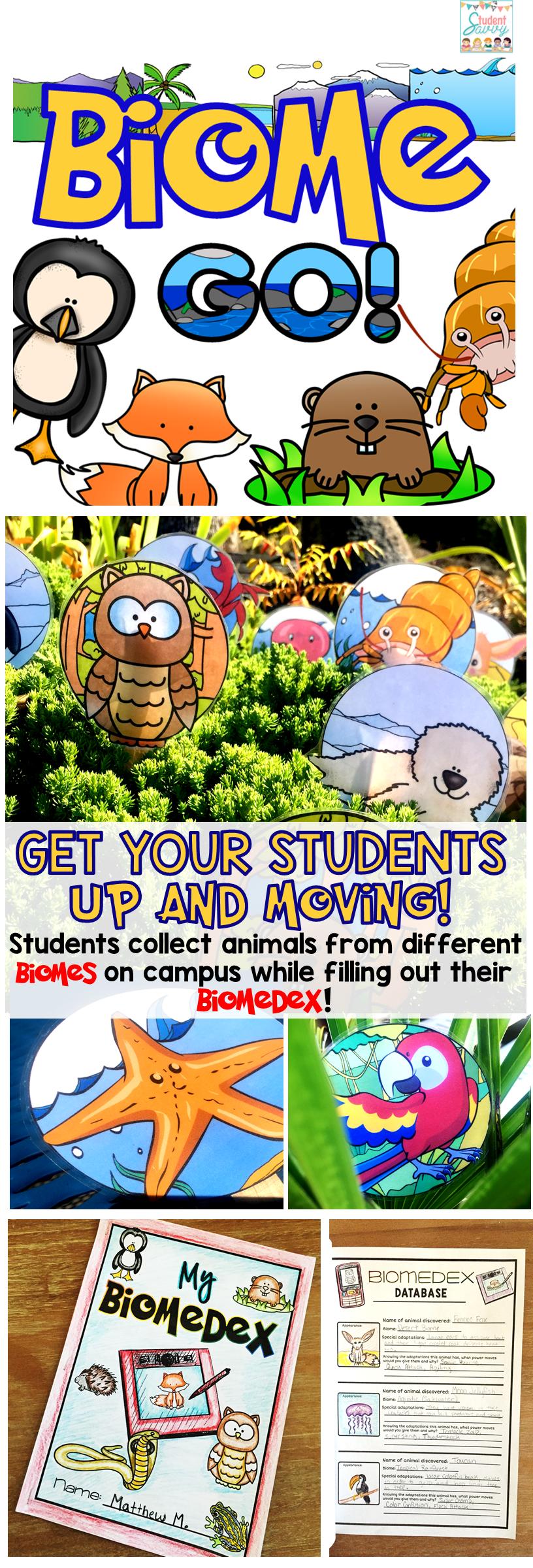 Biome GO! Animal adaptations, Biomes, Teaching biology