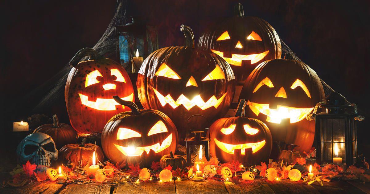halloween die geschichte der kürbisse und gruselgestalten