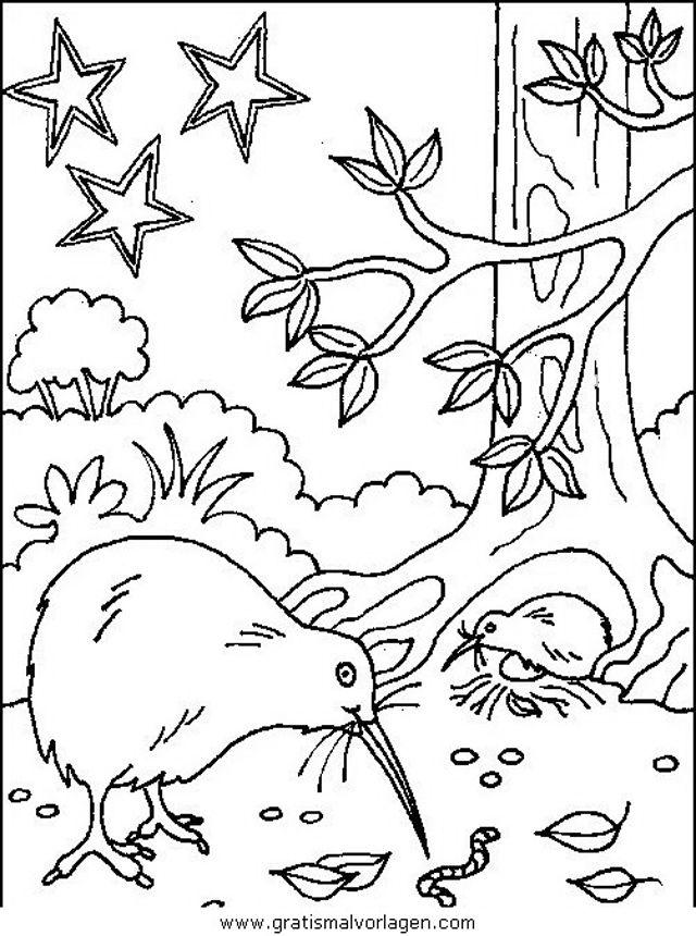 Verschiedene Vogel 158 In Tiere Gratis Malvorlagen Vogel Malvorlagen Malvorlagen Bilder Zum Ausmalen Fur Kinder