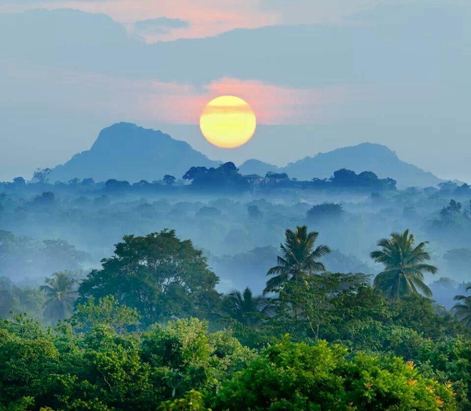Sri Lanka #VisitSriLanka #SriLanka #lka