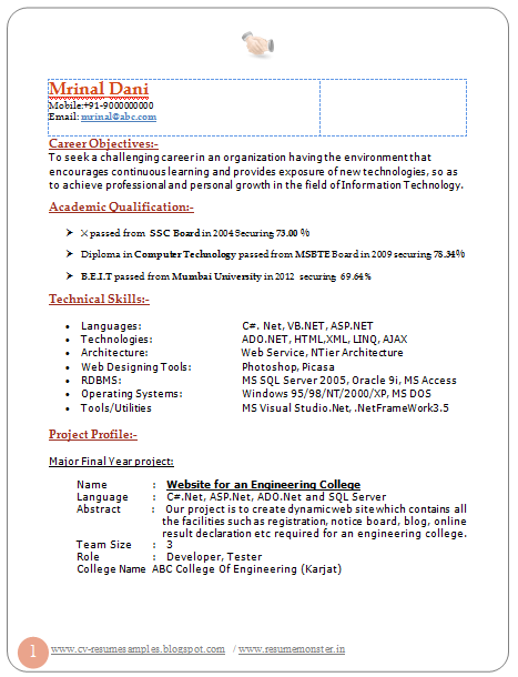 Cv Resume Sample  Curriculum Vitae Resume Samples