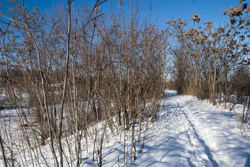 Il Parco Fluviale Gesso e Stura è il più importante scenario verde della città di Cuneo d'inverno
