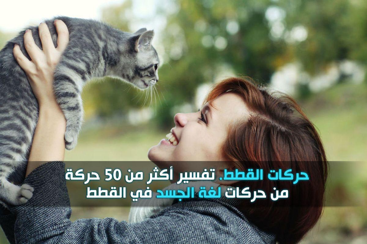 قاموس حركات القطط ومعناها نقدم لكم تفسير أكثر من 50 حركة من لغة الجسد عند القطط تفسير حركة ذيل القطة وحركة العينين والأذنين و الش Movie Posters Movies Poster