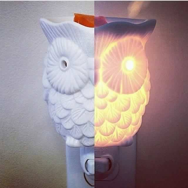 https://chelseababer.scentsy.us/Buy/ProductDetails/23211