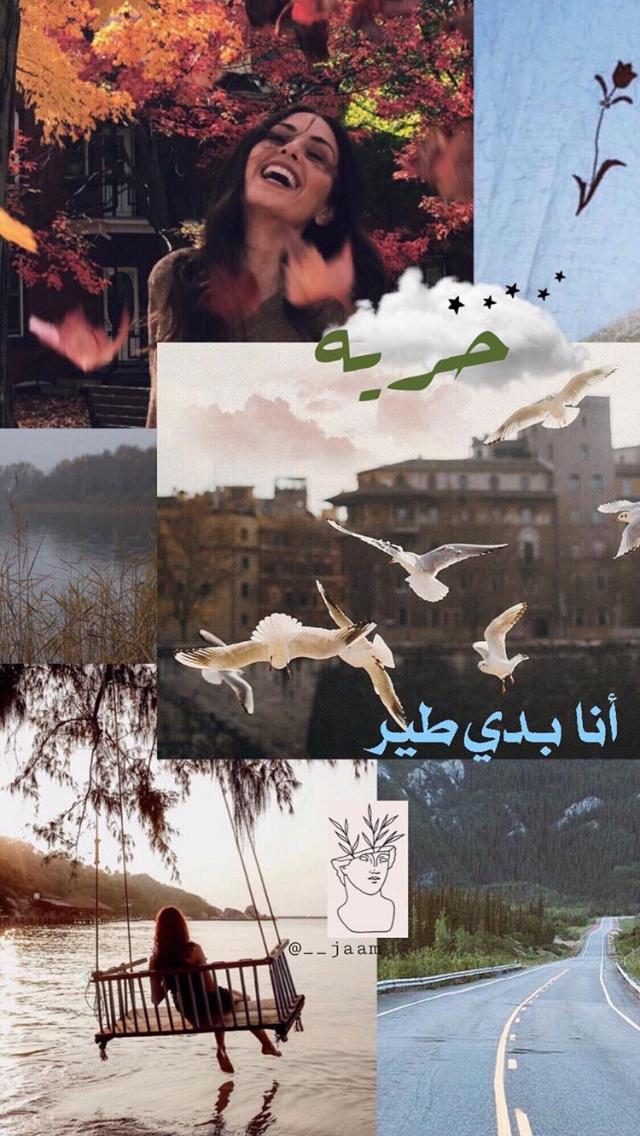 هبة طوجي Funny Arabic Quotes Cover Photo Quotes Arabic Love Quotes