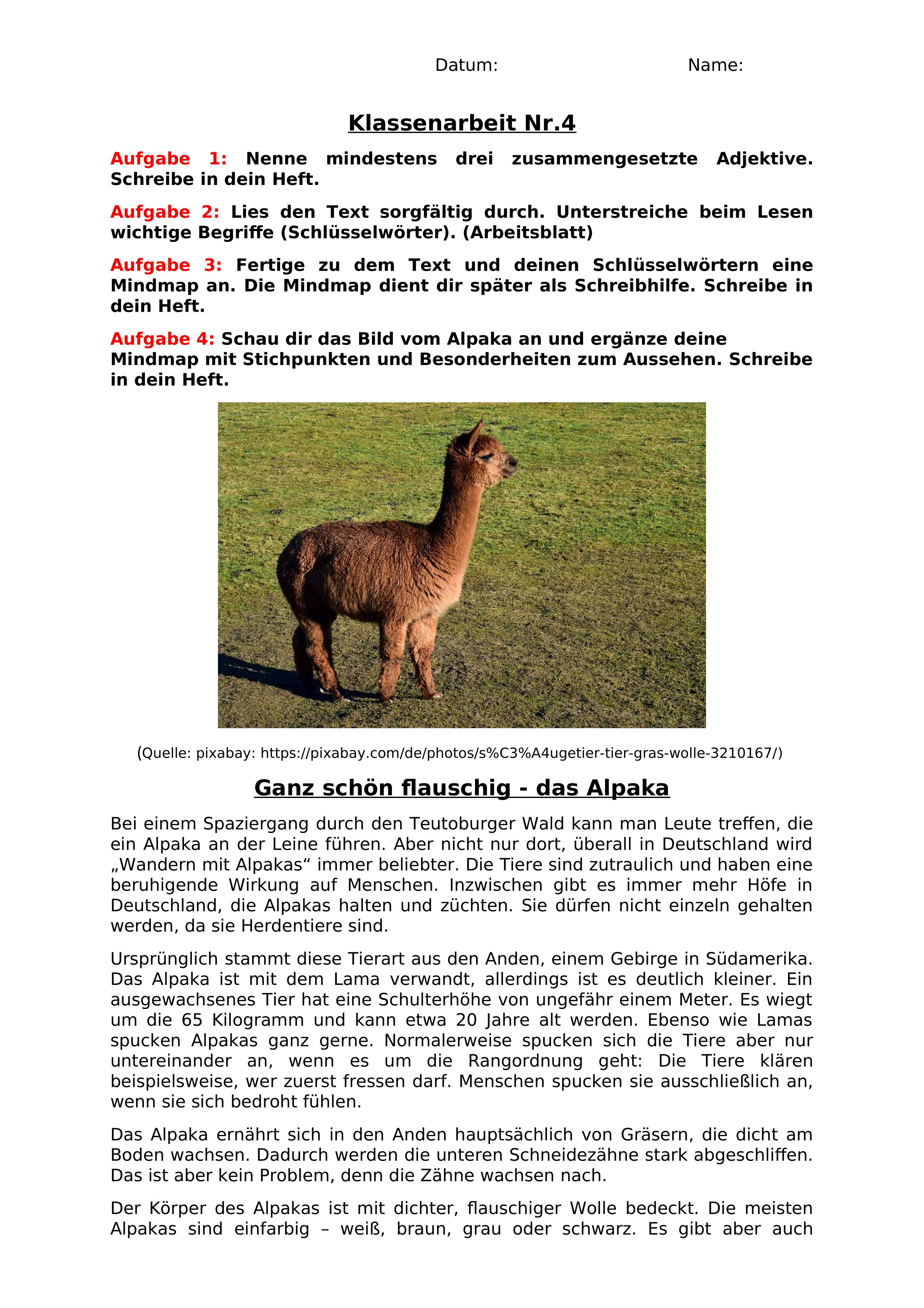 Tierbeschreibung Klasse 5 Gymnasium Ubungen