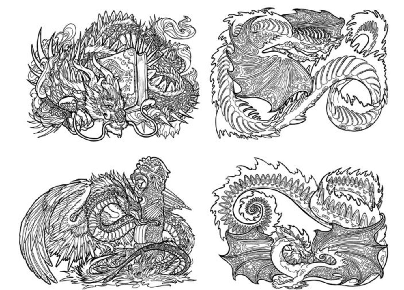 Coloring Book For Adults Dragon Adventure Stress Relief Animal Color Patterns