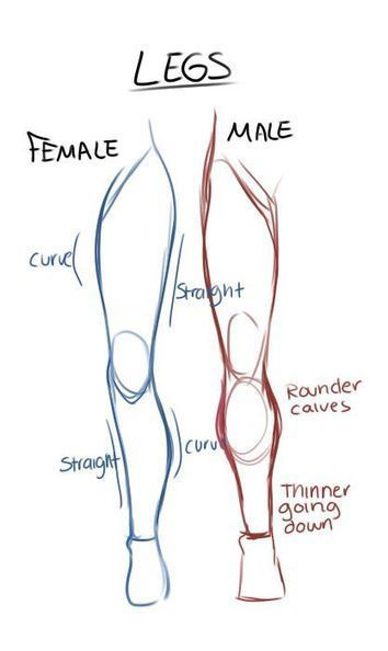 Gender Legs Drawing Reference Guide Drawing References And