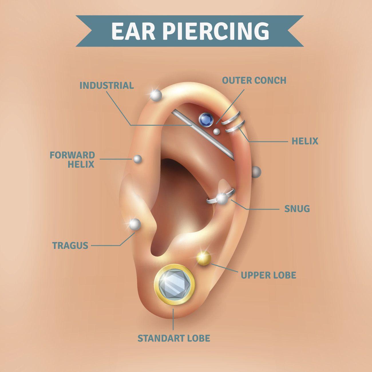 Ear Piercing #lovesit Ear Piercings Types, Body Piercings, Cartilage  Piercings, Piercing Ohr