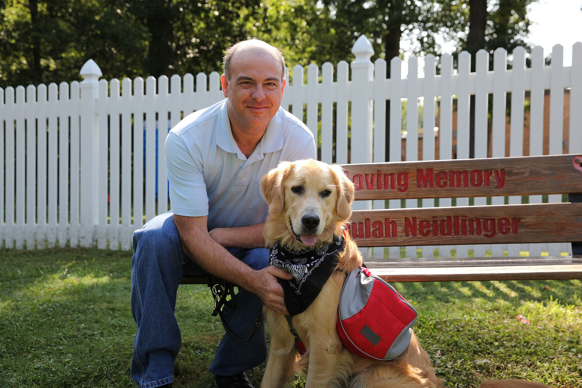 Golden retriever service dog is trained to snuggle his