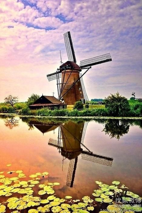 Reflection Holland