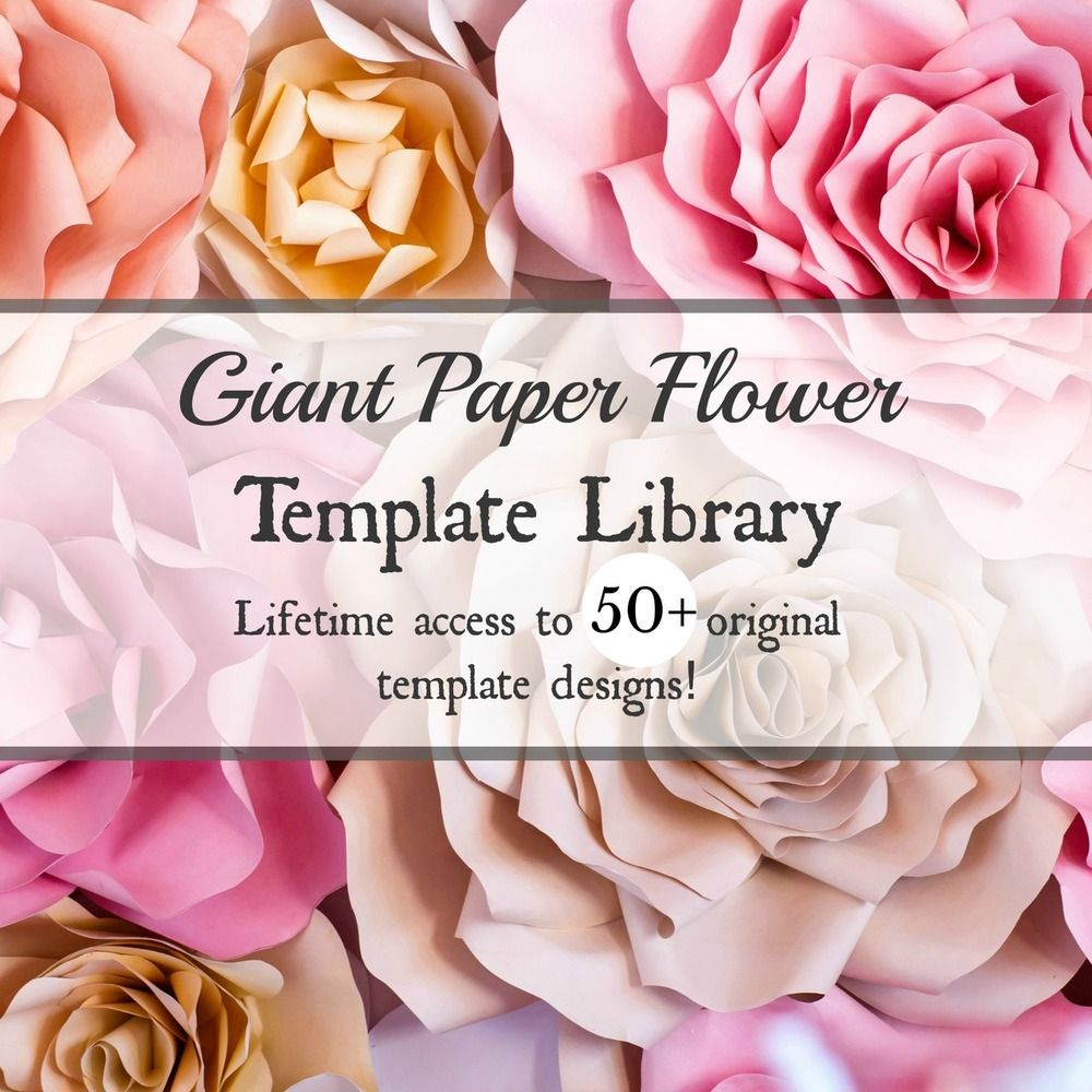 Giant Paper Flower Template Library Bundle Set Of 60 Templates