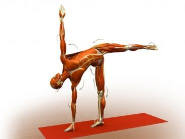 half moon pose an intense stretch of the hamstring