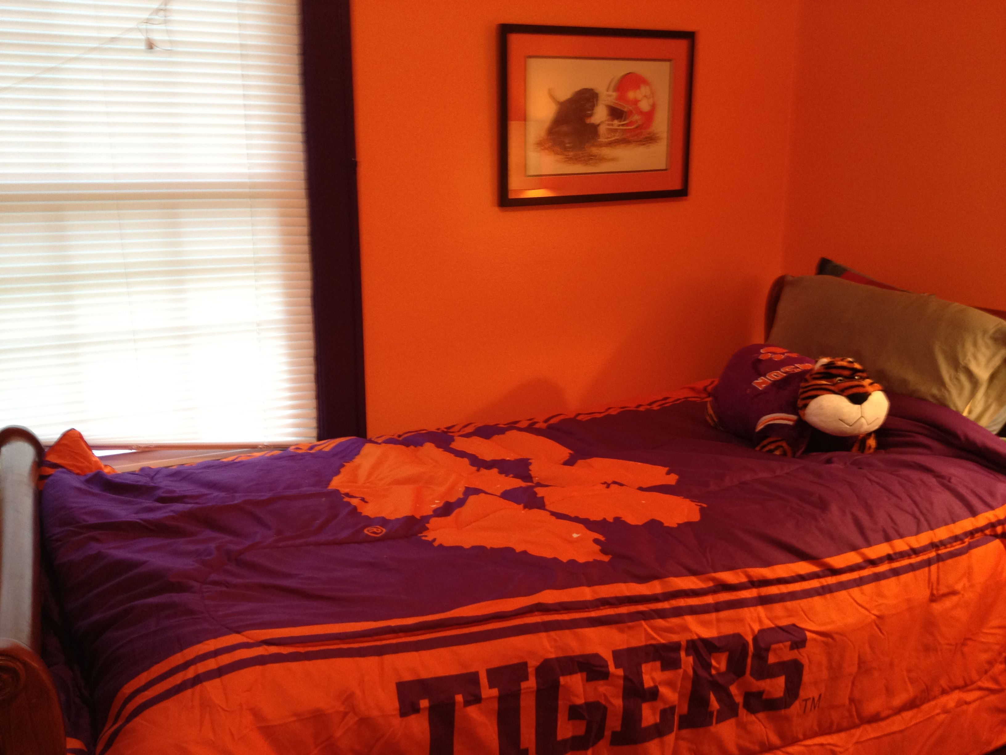 My 9 year old got a Clemson Bedroom for his birthday ...