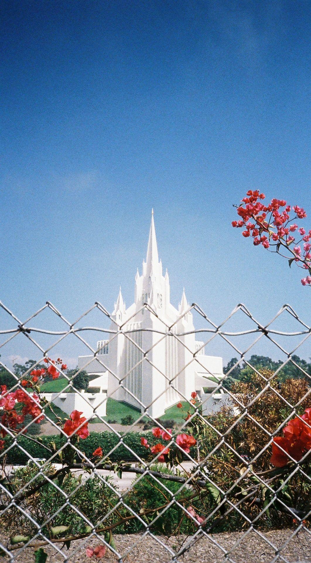 mormons, la jolla, san diego, california