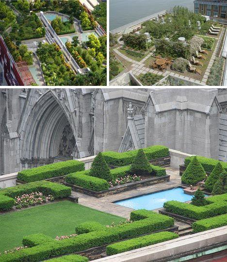 Beautiful roof top garden design and pool