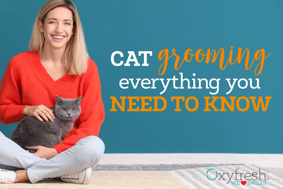 Cat Overgrooming What You Need To Know Cat Grooming Pet Health Cat Bad Breath