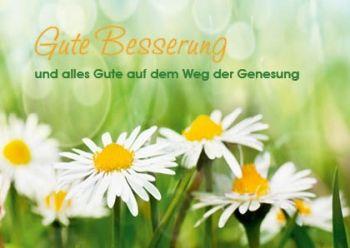 Fotogrusskarte Gutebesserung Genesung Blumenwiese Logo