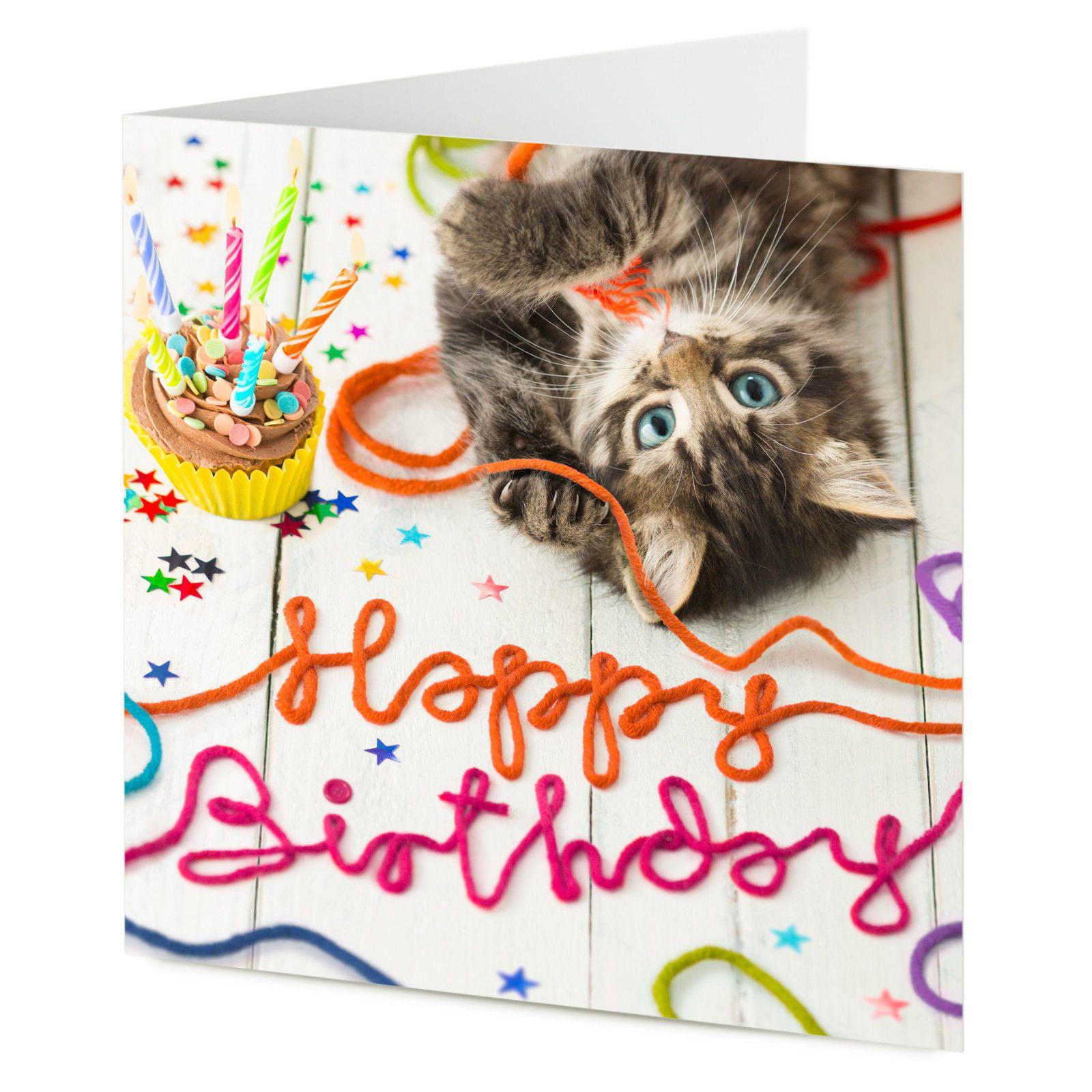 Happy Birthday Cute Cat Kitten Playing With Wool Birthday Greetings