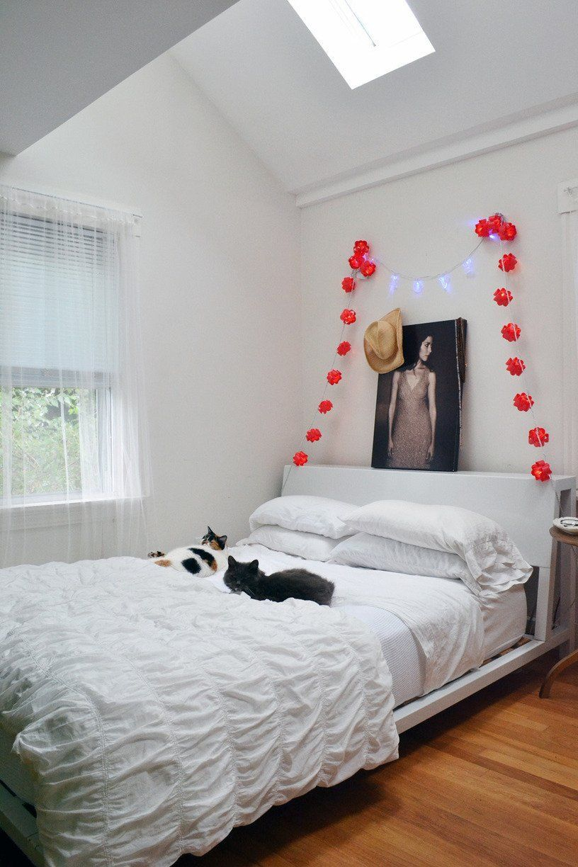 ✔ Cat Stuff Products Apartment Therapy #loveanimals #cute #catlover