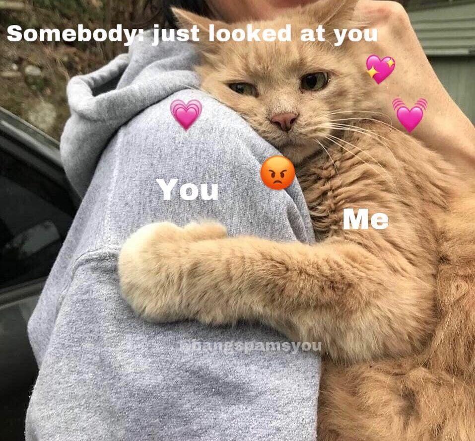 This Person Is Minee Do Not Loookkk Cute Memes Cute Love Memes Love Memes