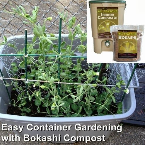 Olivia Cleans Green: Easy Container Gardening with Bokashi Compost