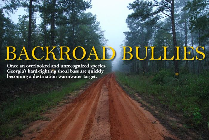 Article Backroad Bullies Best Fishing Red Dirt Road