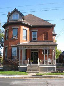 Bright and beautiful one-bedroom apartment! Hamilton Ontario image 1