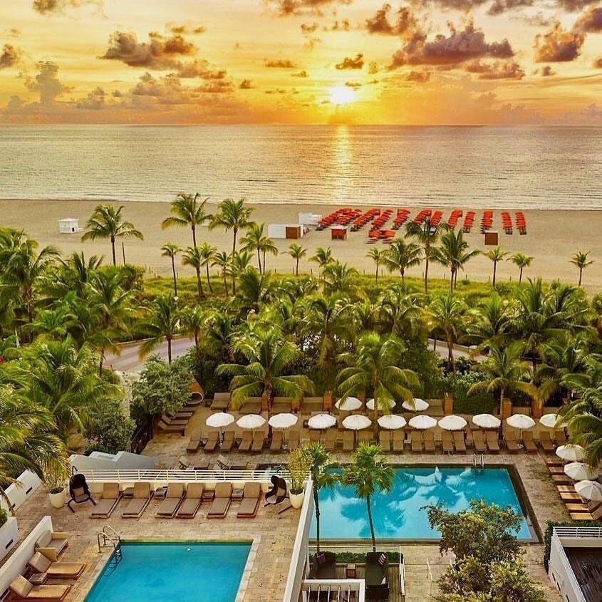 Royal Palm South Beach Miami By Joans