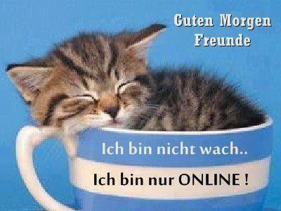 Good Morning Friends I M Online Only Mit Bildern Guten
