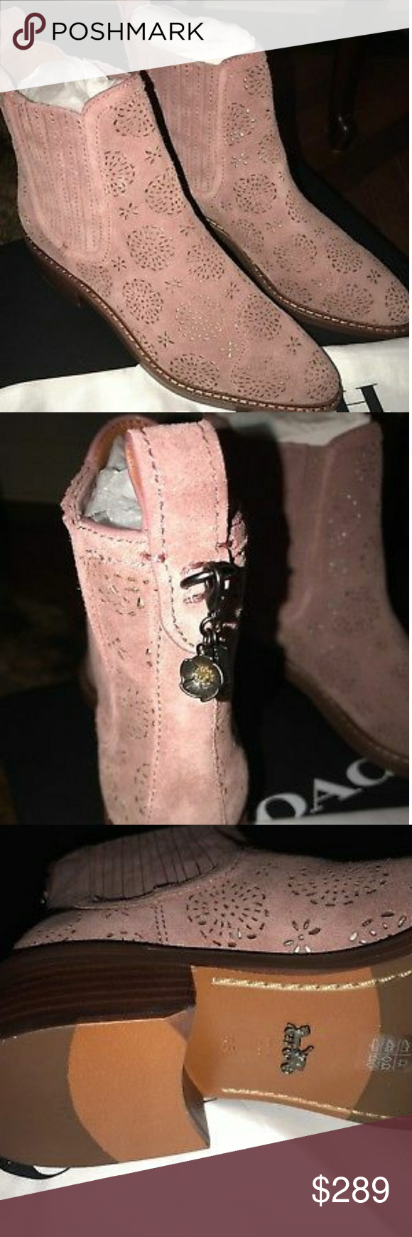 1c526ecef8 Coach Booties Bowery Tea Rose Cutout Chelsea Bootie Shoes Dusty Rose ...