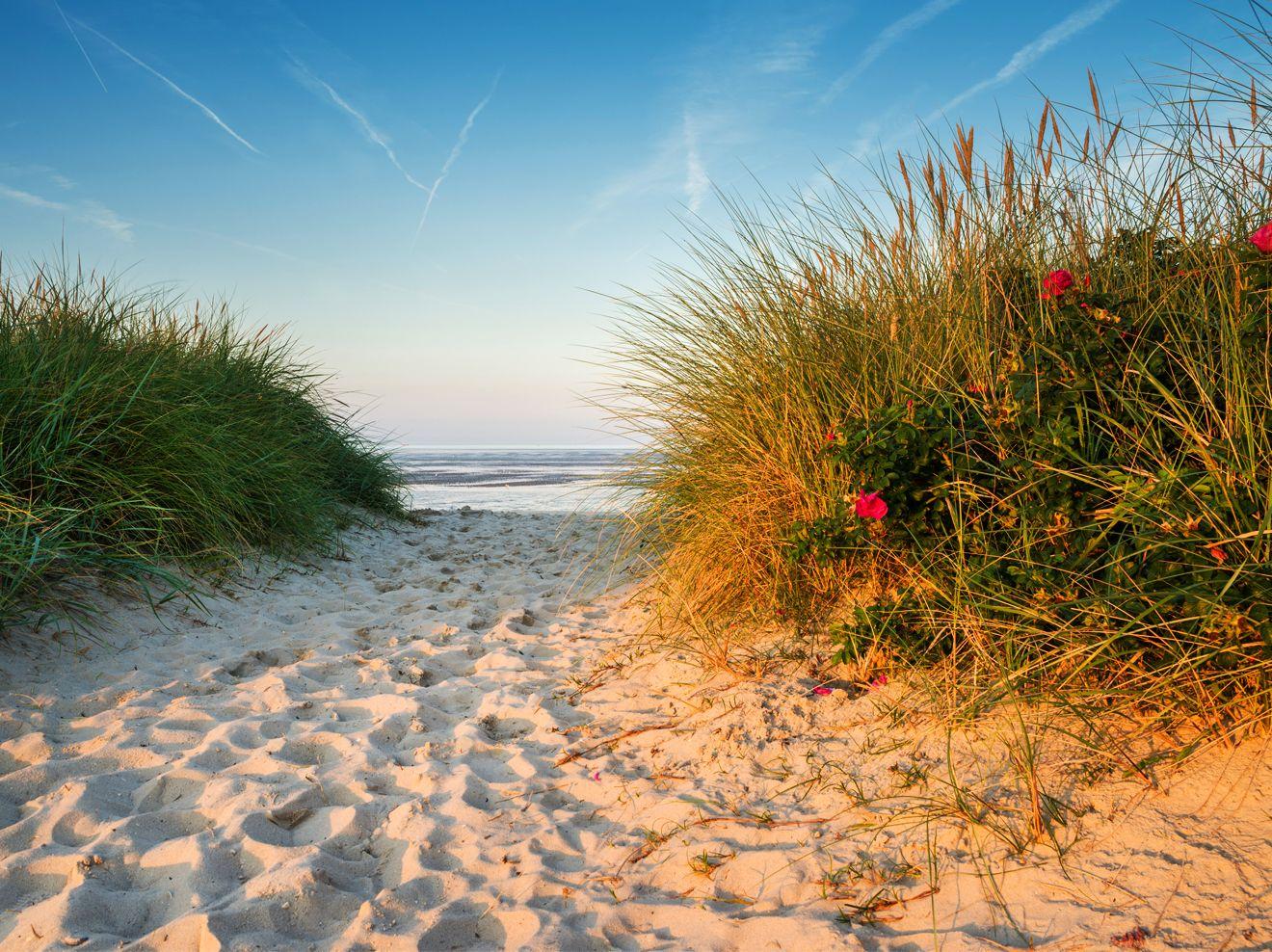 Nordseekuste Eintritt Am Strand Ist Illegal Strand Nordsee Und