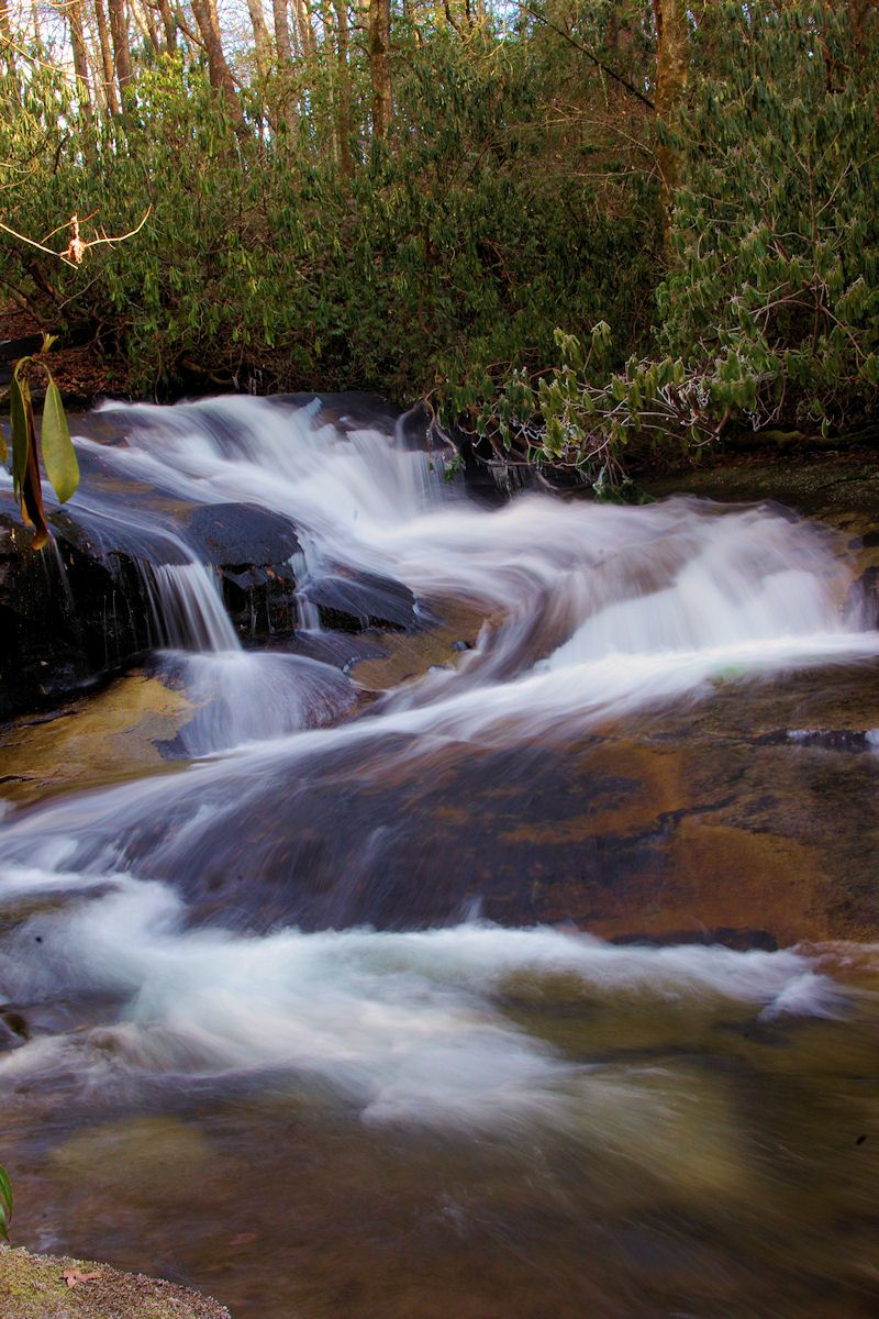 Cove Creek Falls, #waterfall in Pisgah National Forest in North Carolina mountains near Asheville